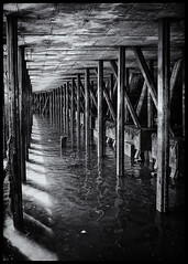 "Under The Pier (Nathan Reading) Tags: water pier seaside harbour grain convergence grime blackwhitephotos ""flickraward5"""