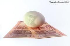 Invest Nest (Bakya-www.bokilphotography.com) Tags: cactus canon lens photographer nest indian egg projection vivitar pune invest 50mmf18 gandhiji rupees 285hv strobist 40d v2s