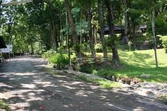 IMG_0135 Doi Intanon National Park (ol'pete) Tags: thailand chiangmai canoneos350d เชียงใหม่ ประเทศไทย earthasia อุทยานแท่งชาติดอยอินทนนท์ doiintanonnationalpark น้ำดกแม่กลาง