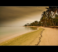 Saman #1 (r.batista) Tags: ocean vacation sun beach nature water landscape spring sand dominicanrepublic atlanticocean 2009 saman aplusphoto artofimages bestcapturesaoi mygearandmepremium