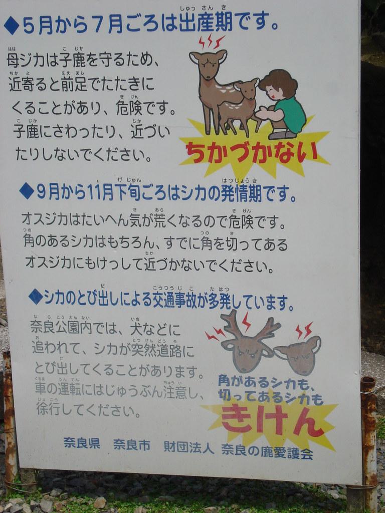 TOKYO AND STUFF
