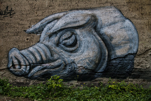 Roa Pig Painting - Urban Affairs 09 (by urbanartcore.eu)
