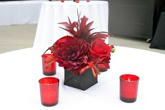 Small red and black centerpiece (Rolland Glass) Tags: flowers wedding roses feathers centerpiece weddingflowers kangaroopaws blackdahlia