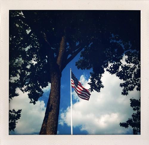 Patriotic Roots