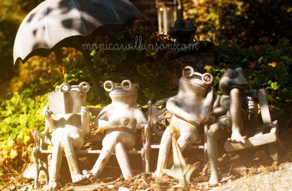 frogsWEB