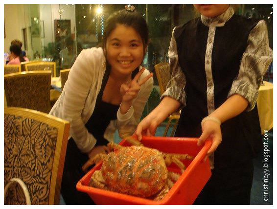 Shark's Fin & Chinese Seafood Restaurant: 3.6 kg King Crab