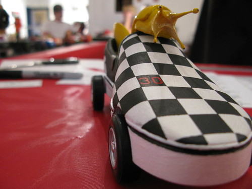 Alex's Slug Slipper