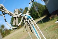 DSC_0788 (Bethhhhhhh) Tags: clothespins