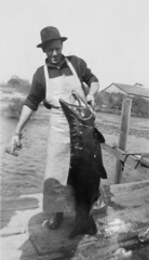 Fall Chinook Salmon (OSU Special Collections & Archives : Commons) Tags: salmon flickrhome osuarchives pacificnwstreamsurvey dc:identifier=streamsurvey847