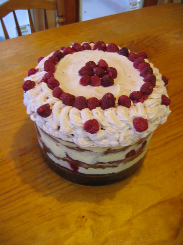 HCB top of choc rasp trifle