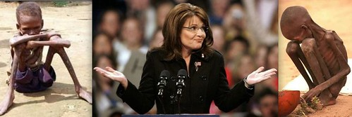 Palin - What - me worry