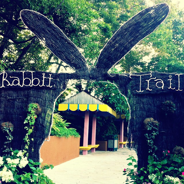 Rabbit Trail at Sentosa