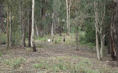 Lot 41, Bournda Park Way, Wallagoot NSW
