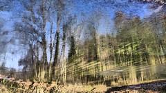 Rossbramgraben (Aah-Yeah) Tags: rossbramgraben tennbodenbach marquartstein achental chiemgau spiegelbild