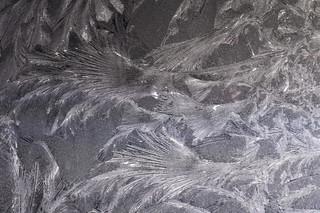 Ice fan