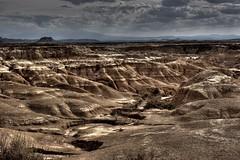 Brdenas Reales (Pablo Urkiola Andujar) Tags: landscape desert paisaje desierto navarra bardenas reales