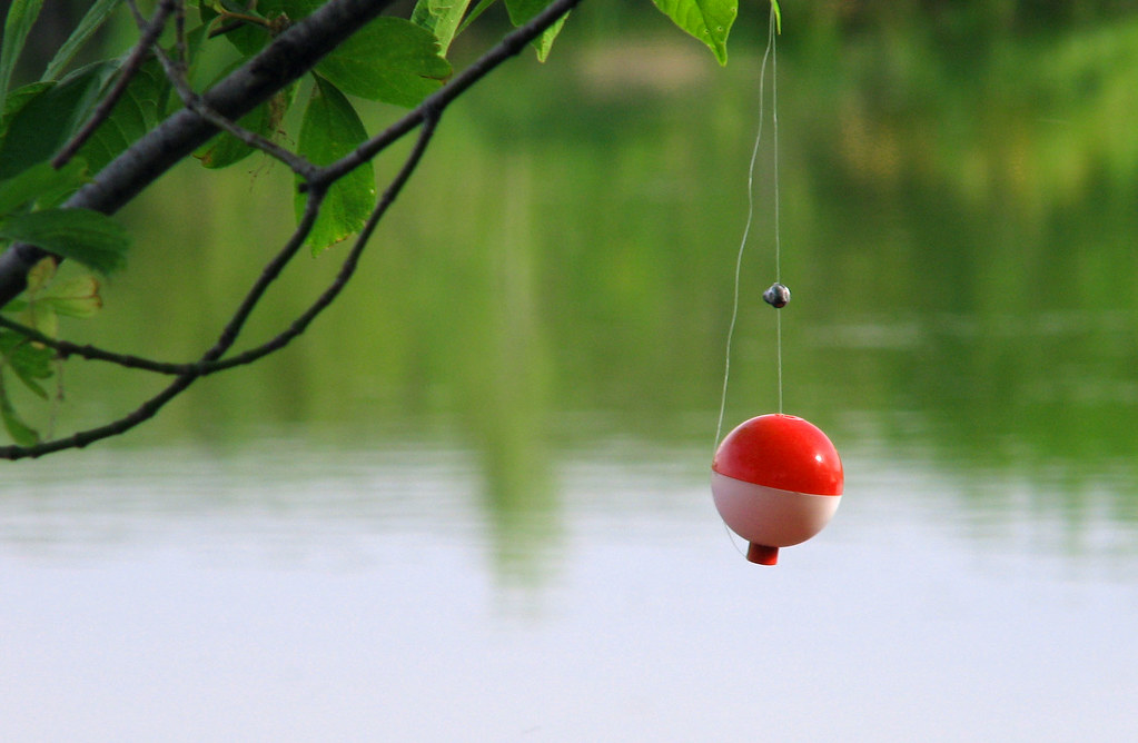 Image result for picture bobber hanging from tree