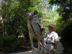 10 - Iz Riding the Camel