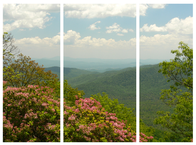 Mountain View Triptych