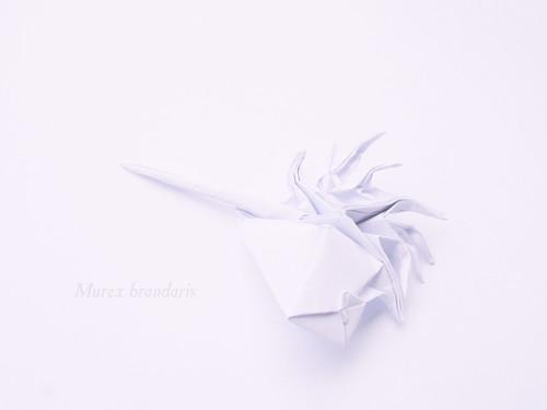 Origami Murex