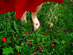 summertime | nyr (artkele) Tags: red summer green girl grass foot nikon leg vivid skirt poppy nailpolish l4 pipacs piros zld nyr szoknya lny lb f lbfej lbujj krmlakk footfinger artkele ballacsnge csngeballa