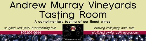 Andrew Murray Internet Banner