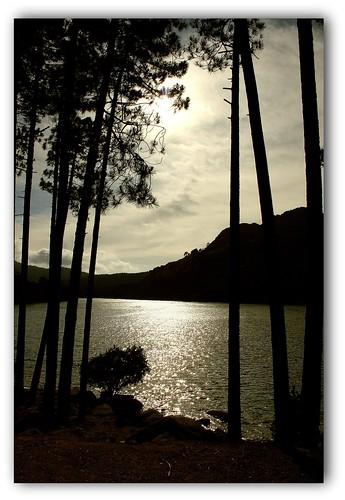 Soleil voilé sur le lac