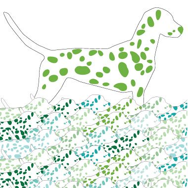 green dalmations