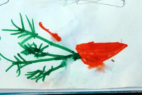 aidan's carrot