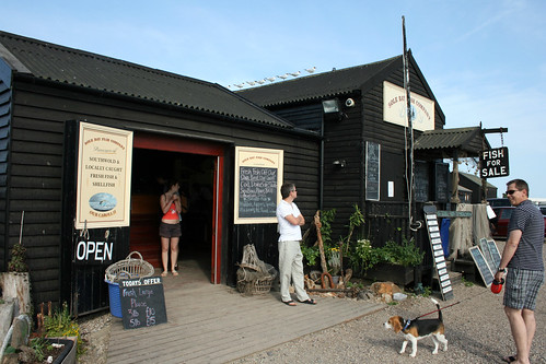 Sole bay fish company