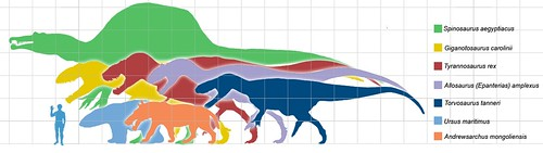 Giant predators scale (from Wikimedia)