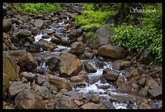 Stream near Korle (s.saiganesh) Tags: trek sahyadri bhor kenjalgad