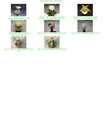 Bild 009 (sambucus2009) Tags: astrophytum kikko asterias superkabuto krausei