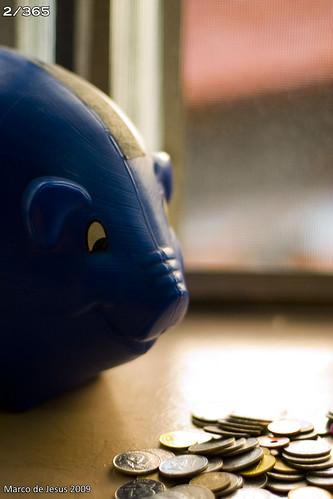 Thrifty Piggy