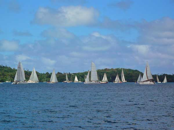 Boats lining up for the start of the Governor's Cup