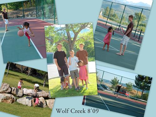 wolfcreek & pineview