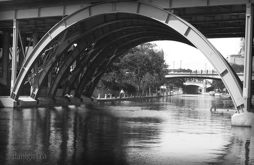 234:365 Laurier Avenue Bridge