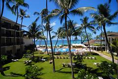 """""""Halekulani - Waikiki, Hawaii"""" 7087"""