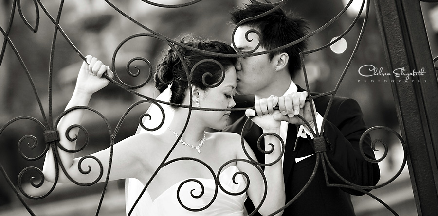 Black and white, bride and groom portrait, on black rod iron gate, wedding image