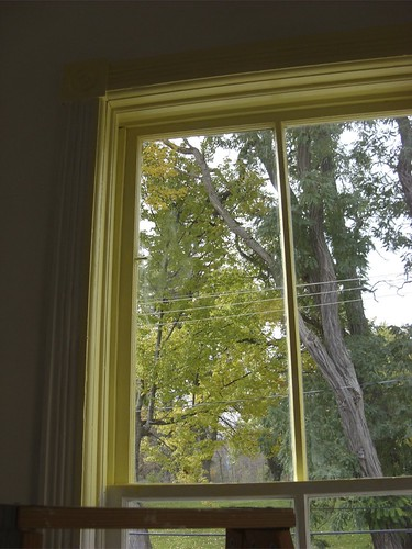 painting the window frames yellow