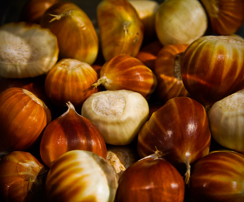 Collection of sweet chestnuts out of their shells
