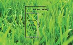 23 Risdon Circuit, Tarneit VIC