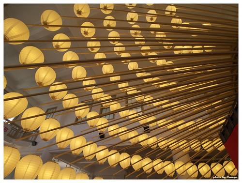 Japanese lantern 20090515 #01