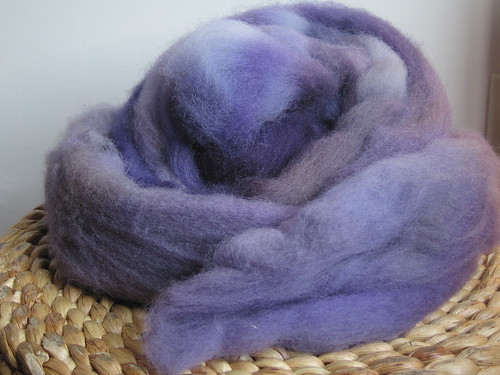 Southern Cross Fibres - Club - June 2009 - Irises - Shetland Top