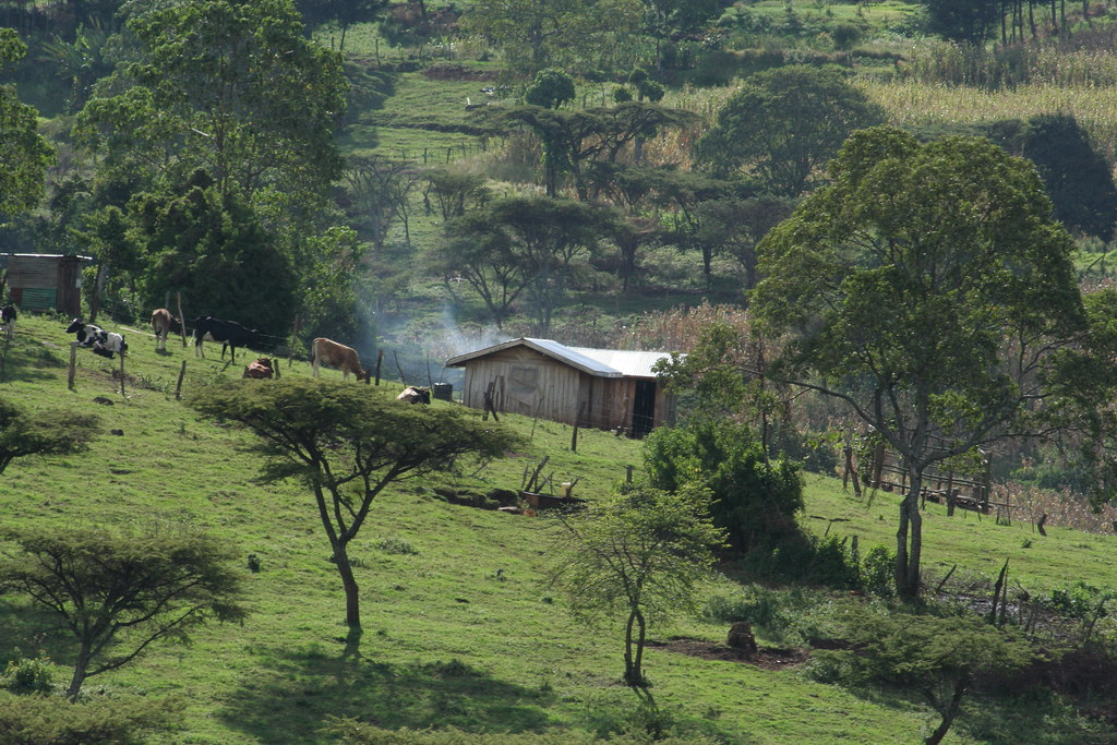 Rift Valley Farmstead