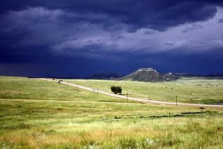 Colorado Meadows