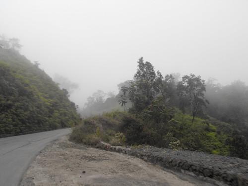 Camino y niebla de consanza