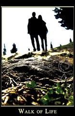 FOKUS 2009 Competition Participation / Walk of Life / Last photo before Holidays! (1-15 Aug) / I wish you a beautiful SUMMER TIME! ( Vasken Spiru) Tags: life holiday love thanks last way photography thankyou walk august monastery albania 115 jete fier manastir albanien shqiperi rruge ardenice vaskenspiru vaskenspiruphotography