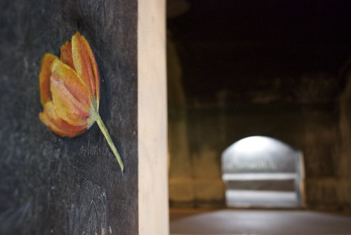a flower under a bridge