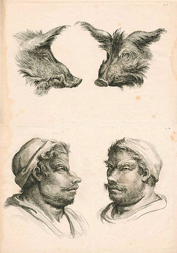027-Le Système de Lebrun sur la Physionomie 1806